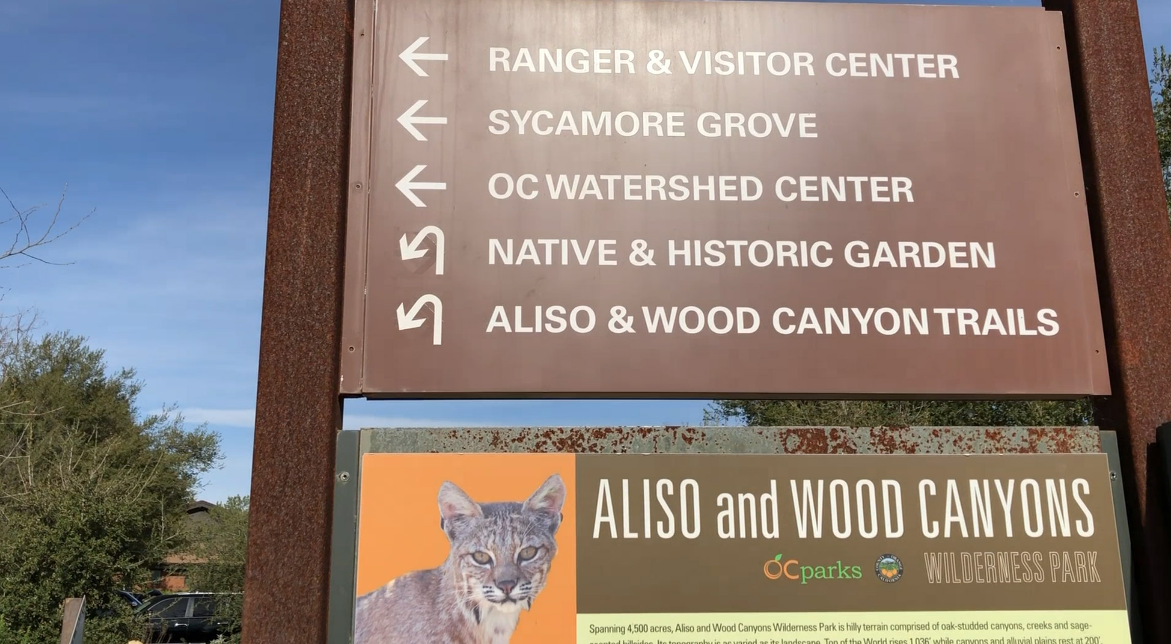 Aliso and Wood Canyon Trail