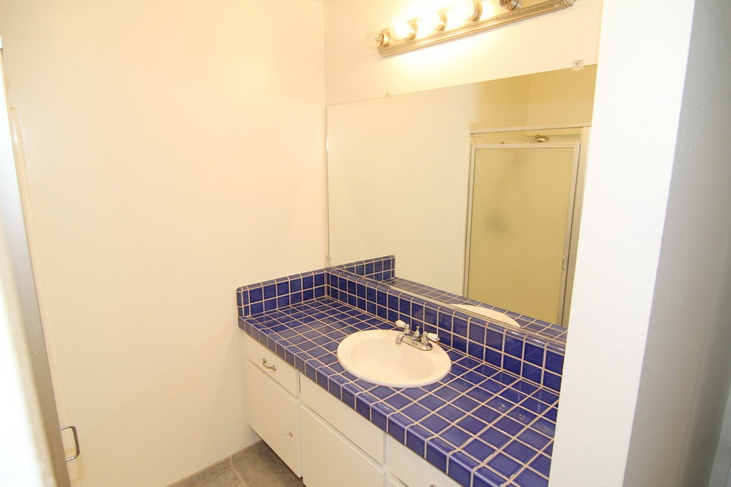 Sink in Bath at 3000 Asscoated Rd. Unit 53